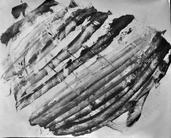 Nuages d'encres | france-noelle pellecer pellecer