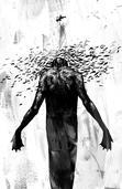 Icarus Alight | Sam Rowe