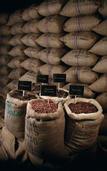 Fèves de cacao | Aurélie Therin
