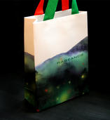 Rabeanco christmas'shopping bag | Mei Han Tang