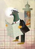 Pigeon parisien | Grégoire Vallancien