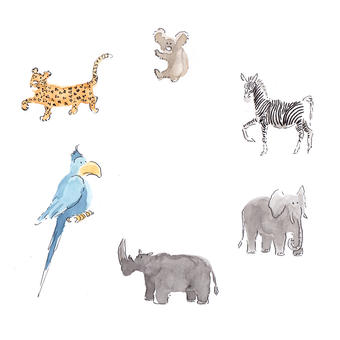 Animaux sauvages | julia weber