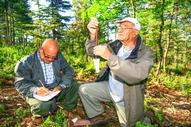 REPORTAGE ( étude sur la reproduction des mésanges. Station du Mont VENTOUX ) | Christophe Constant