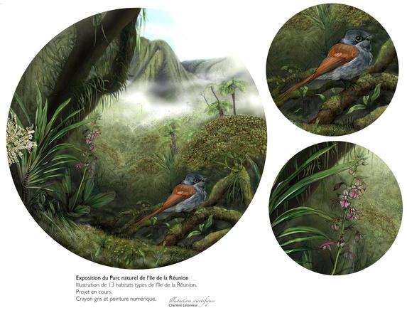 Forêt de bois de couleurs des Hauts au vent | Charlène Letenneur