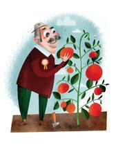 Tomatoes & Heroes | Mez CLARK
