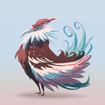 Condor coloré | Alexandre Khammanivong