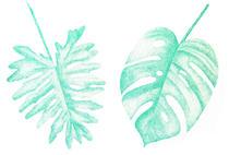 feuilles | Carreaux-Thuilliez Cecile