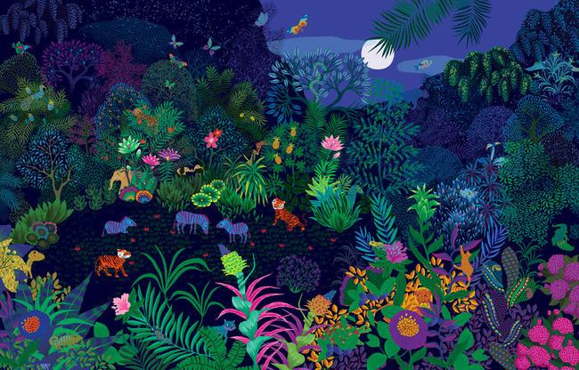 Caches dans la jungle | peggy nille