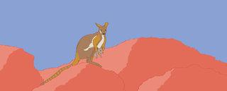 Le wallaby des rochers pour Nidoo
