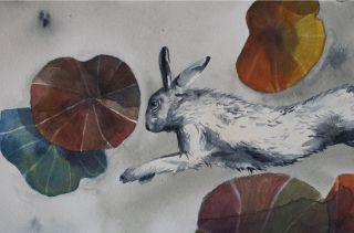 Amandine K Portfolio :Illustrations jeunesse et travaux