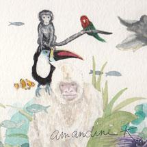 Amandine K Portfolio :Illustrations jeunesse