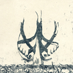 Amélie vidgrain > artist / printmaker / makerNouvelle rubrique : c o n t a c t