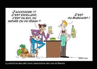 vins de Nantes bio