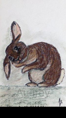 Pastel_rabbit