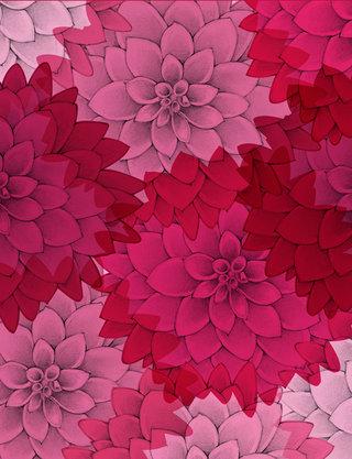 Springtime // Le Dahlia Rose
