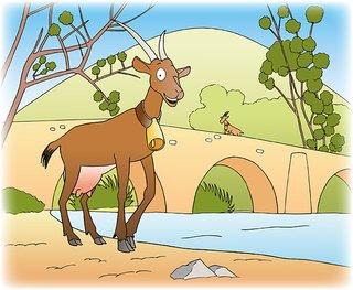 Illustration pour la Chèvrerie de la Buèges 2017