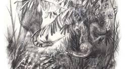quignon - bastien - illustrateur