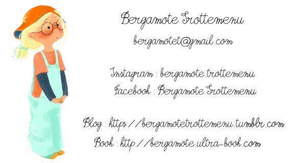 Ultra-book de bergamote Portfolio :