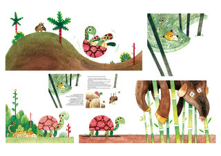 La Tortue, le Tapir et le Jaguar - Ed. Harmattan Jeunesse