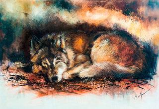 Loup dans sa tanière