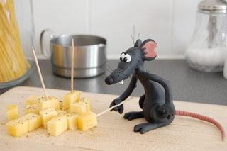 Un intrus dans la cuisine !