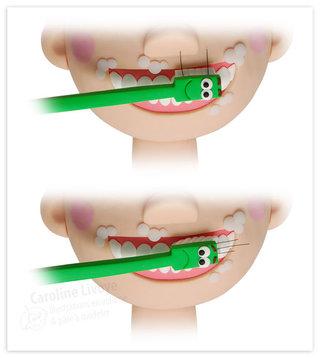 > Comment bien se brosser les dents