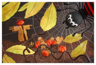 > Halloween !