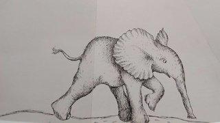 """éléphant'""""!!"""