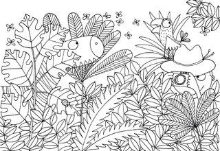 page de coloriage éditions Côté Bord'eau