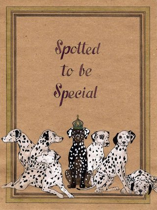 Spotted to be special