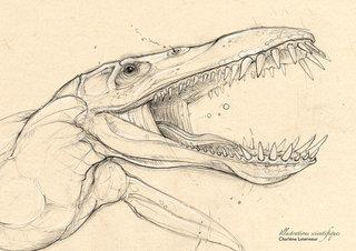 Liopleurodon détails
