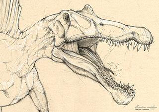 Spinosaure détails