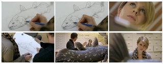 Réalisation d'illustrations et participation au tournage du film :LE COELACANTHE, PLONGEE VERS NOS ORIGINES