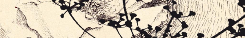 Illustration, techniques mixtes Portfolio