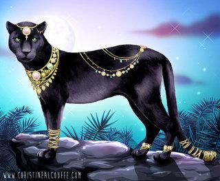 Carnet Créatif Wild Animals - Panthère mystérieuse