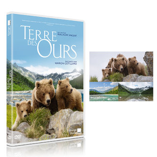 Terre des Ours - Orange Studio