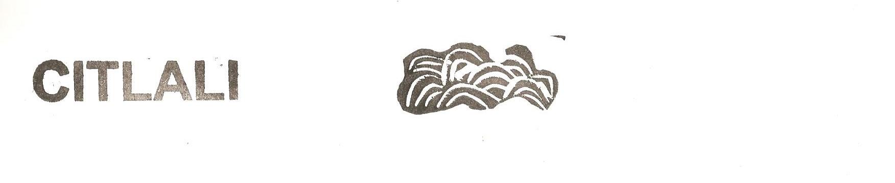 Citlali dessinatrice, glaneuse d'histoires en papier : Ultra-book