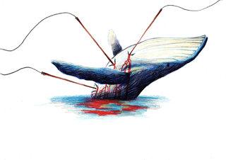 - le coeur d'une baleine -