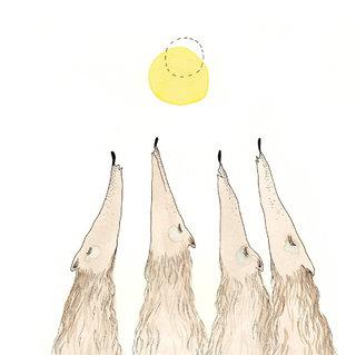 - les loups -