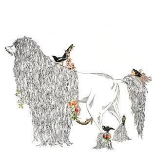 A l'ombre des jeunes pies en fleurs