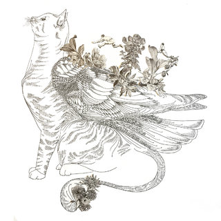 Chat ailé