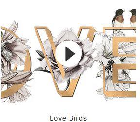 Visuel birds