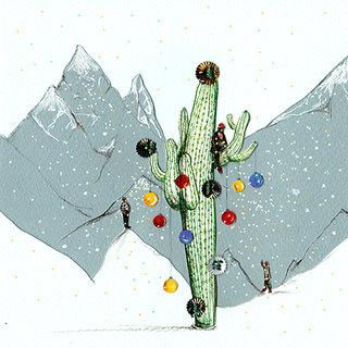 Murgia_Cactus de Noël.jpg