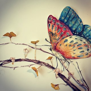 Murgia_Paper butterfly.jpg