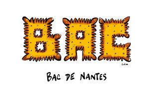 Bac de Nantes