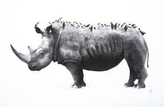 Le rhinocéros et les buphagus