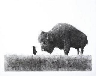 L'ourson et le vieux bison