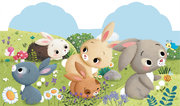 """""""Petit lapin"""".Livre à toucher- Collection """"Les Animodoux"""". Editions Fleurus"""