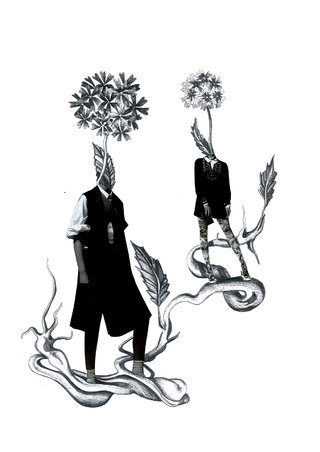 Flore 1 - Humano végétaux