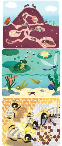Babyencyclopédie des Petites Bêtes